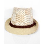 Whitish Grey Cowboy Style Straw Hat CPT-728
