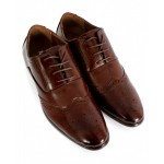 Choco Brown Dotted Stitched Design Formal Shoes CB-2120